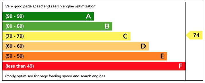SEO Score Example